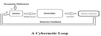 Cybernetic Loop